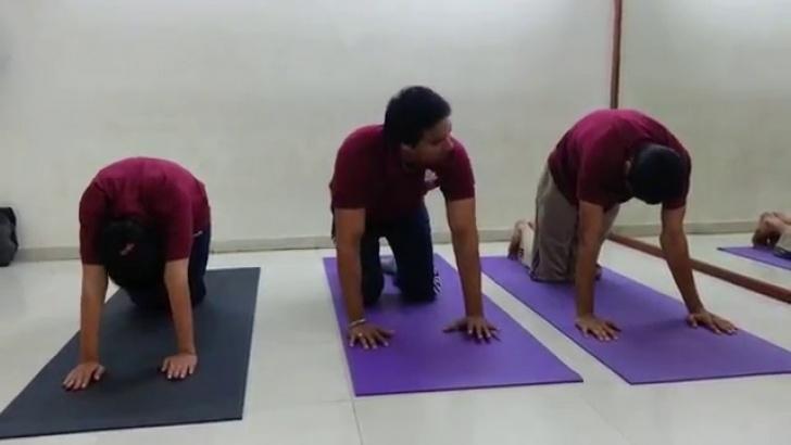 basic back pain yoga in hindi photos