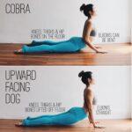 Basic Cobra Pose Vs Upward Dog Photo