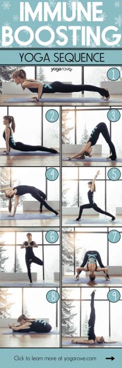 basic yoga poses for immunity images