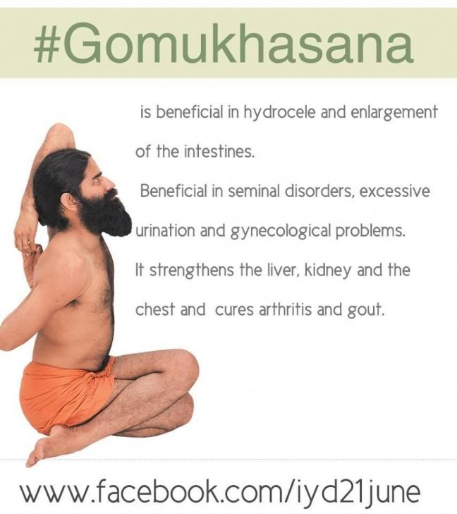 basic yoga poses gomukhasana in hindi picture