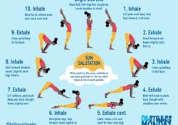 basic yoga poses sun salutation surya namaskar photo