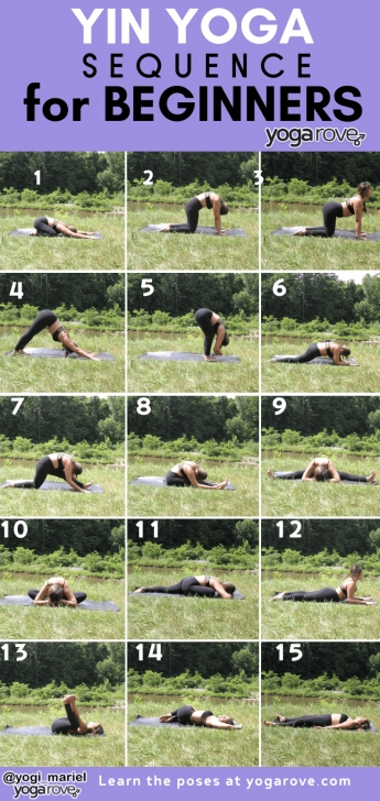 best yin yoga sequence for beginners pictures