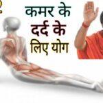 Best Yoga For Lower Back Pain Ramdev Image