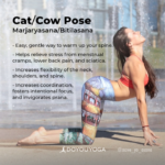 Best Yoga Poses Cat Cow Stretch Benefits Picture