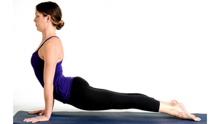 best yoga poses upward dog downward dog photo
