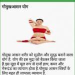 Easy Yoga Poses Gomukhasana In Hindi Photos