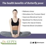 Essential Butterfly Pose Benefits Picture