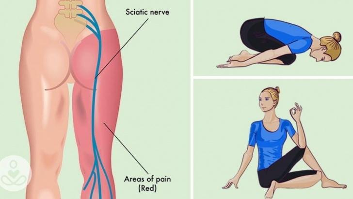 essential yoga poses for sciatica photos