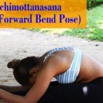 Fun And Easy Yoga Poses Procedure Of Paschimottanasana Pictures