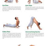 Guide Of Yoga Stretches Lower Back Picture
