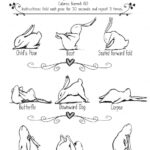 Most Common Nighttime Yoga Stretches Photos