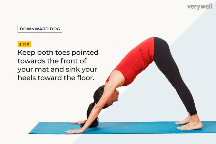 most common yoga positions for beginners photos