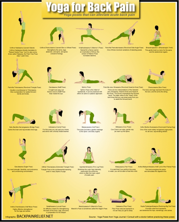 most important yoga poses for the back pain pictures