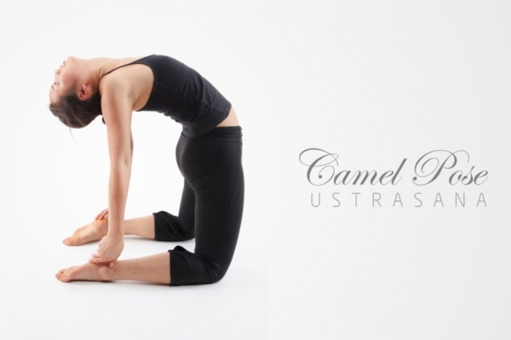 must know ustrasana preparatory poses picture