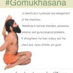 Must Know Yoga Poses Gomukhasana Benefits In Hindi Photo