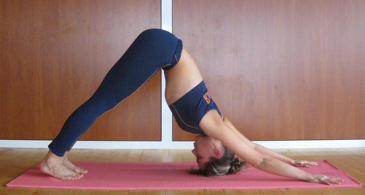 popular yoga moves downward dog pictures