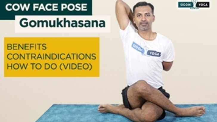 popular yoga poses gomukhasana benefits in hindi image