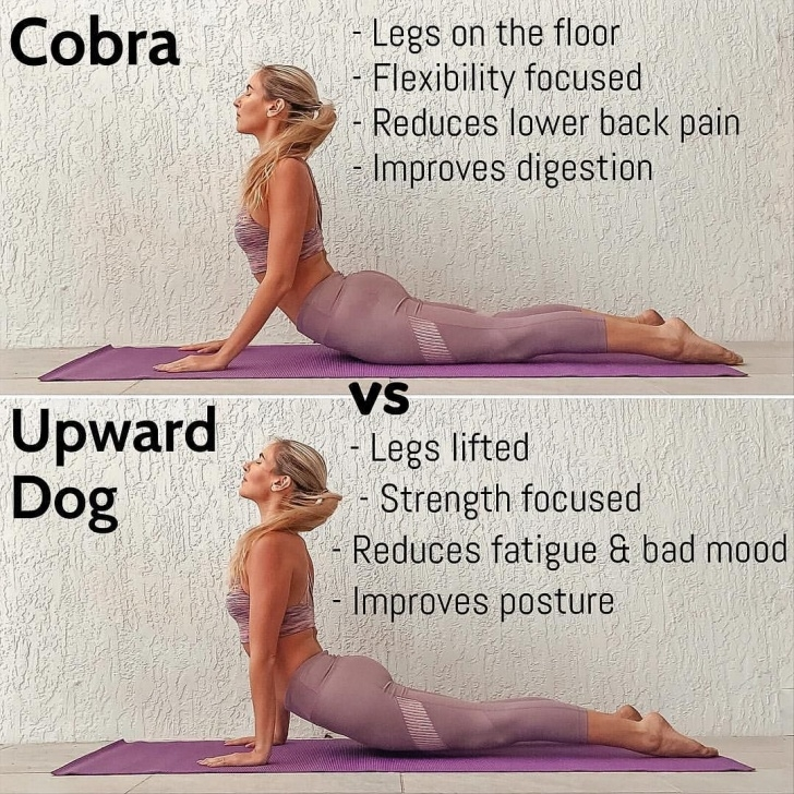 simple cobra pose vs upward dog picture