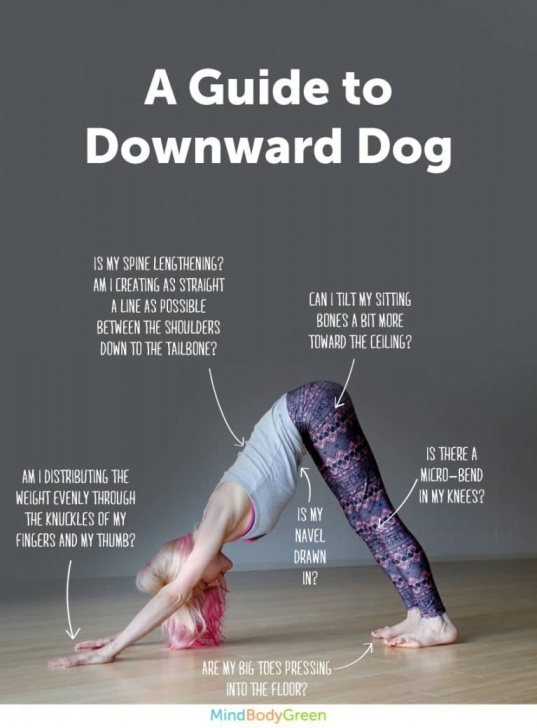 simple downward facing dog pose benefits picture