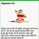 Top Yoga Poses Gomukhasana Benefits In Hindi Photos